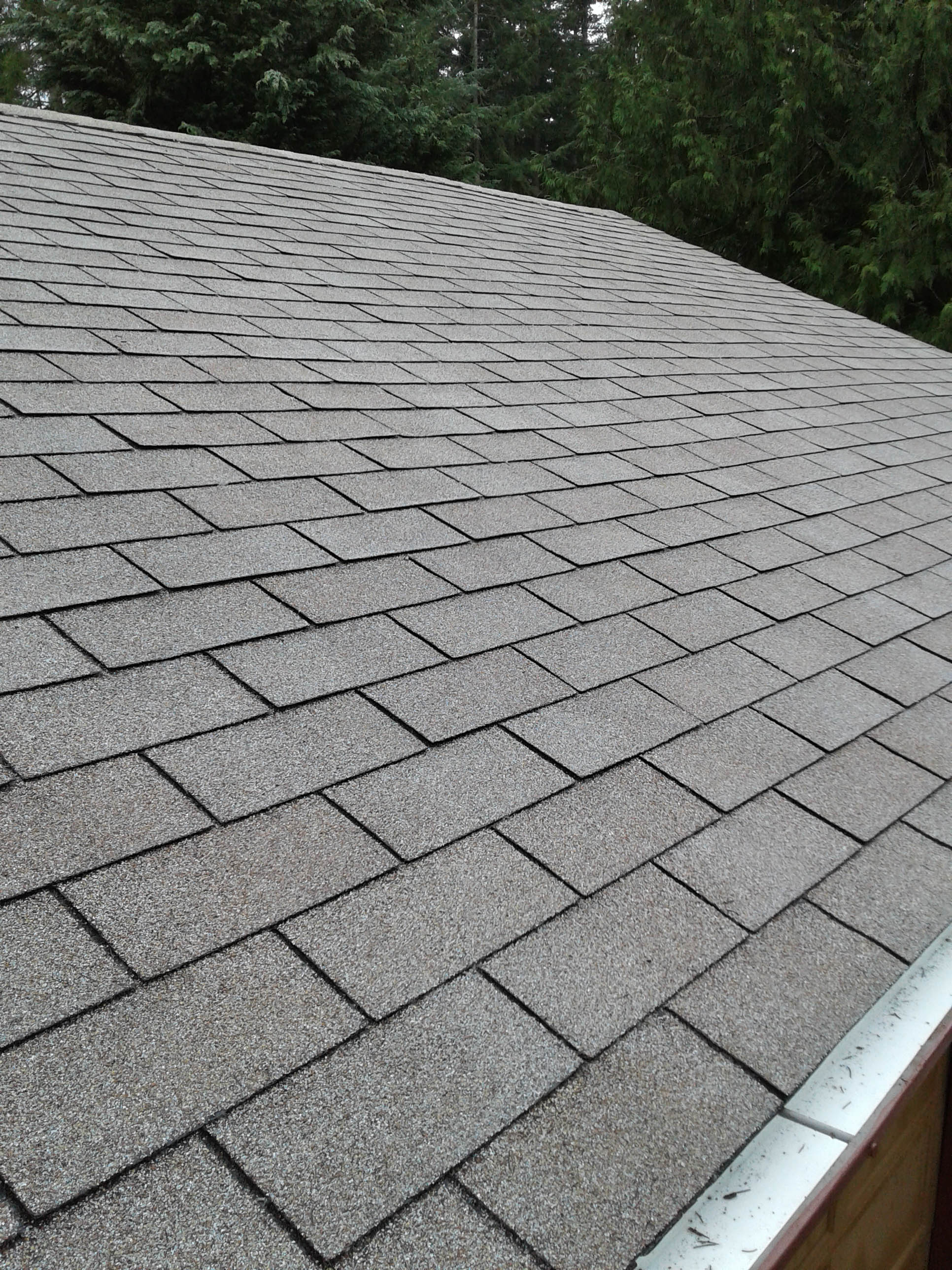 soy-based roof treatment