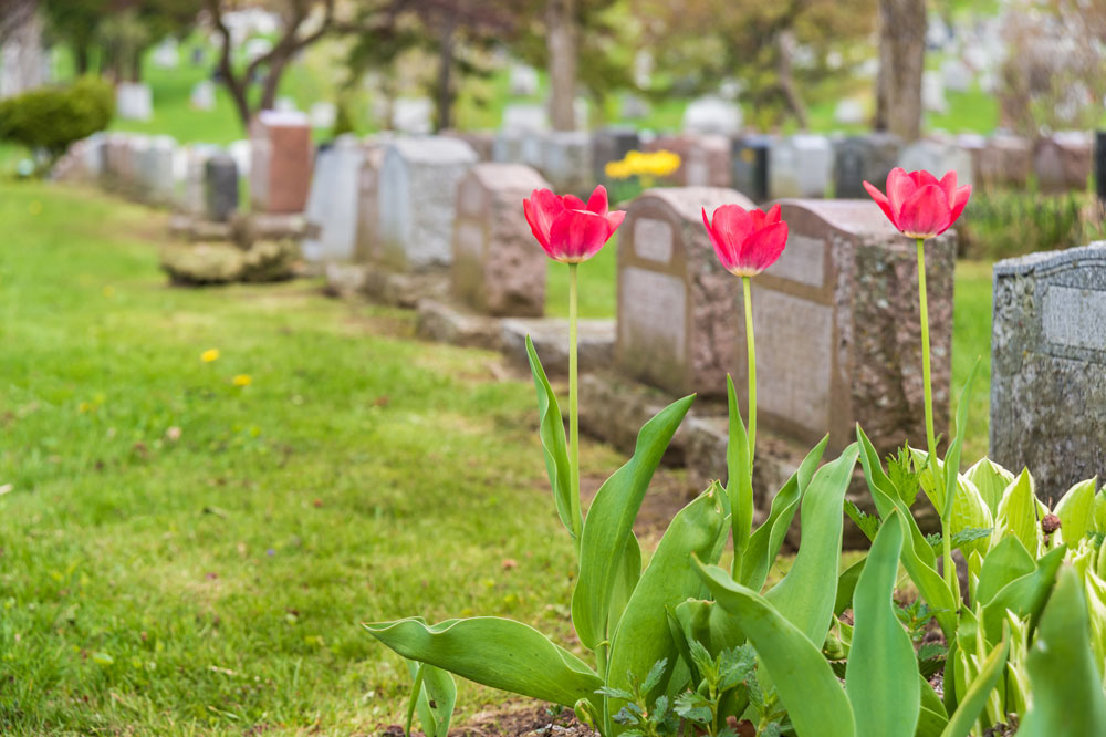 A Guide to the Different Maintenance Needs of Different Headstone Materials