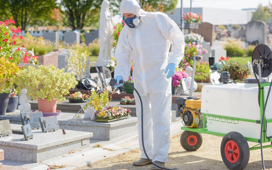 Why You Can Trust A-Plus Softwash for Cleaning a Loved One's Headstone