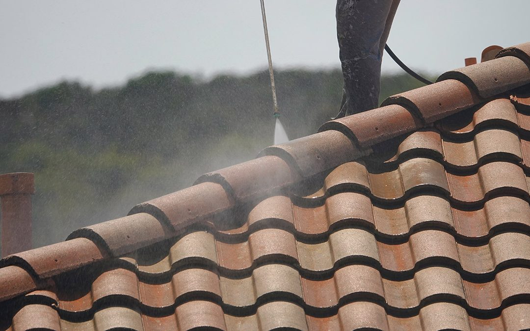 Signs You Should Get Your Roof Professionally Cleaned